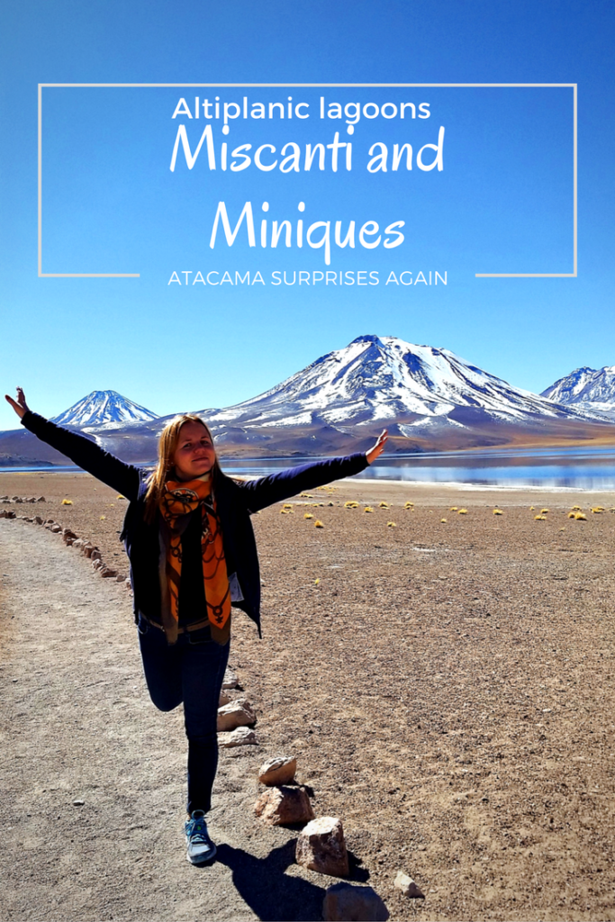 Altiplanic lagoons, Miscanti and Miniques in Chile